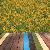Wood table top on sunflower background montage concept — Stock Photo