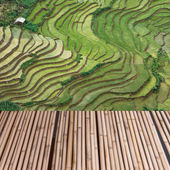 Wood table top on rice field terrace background montage concept — Stock Photo