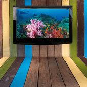 Plasma TV on the wood wall — Stock Photo