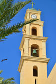 Tel Aviv Jaffa. Old tower. Palma. Bird. — Stock Photo