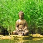 Little Buddha near the pond — Stock Photo #70553941