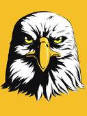 Eagle Head Vector - Front View Cartoon — Stock Vector