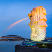 The Merlion fountain lit up at night in Singapore. Singapore is — Stock Photo