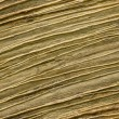 Texture of old wood — Stock Photo #53085533