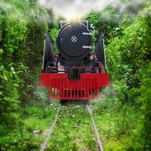 Vieux train — Photo