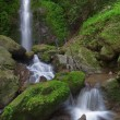Waterfalls in deep forest — Stock Photo #75371027