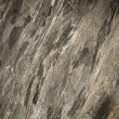 Texture of old wood — Stock Photo #75371093