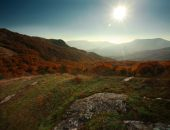 Autumn forest in the mountains under the blue sky — Stok fotoğraf