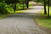 Route qui serpente dans la montagne — Photo