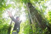 Guid in the jungle, in Thailand — Stock Photo