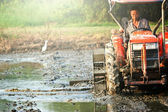 Tractor plowing  rice field in thailand — Stock fotografie