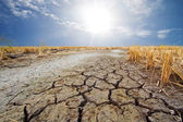 Dry earth in the dry season in Thailand — Stock Photo