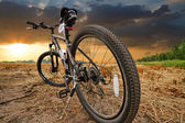 Mountain biking down hill descending fast on bicycle — Stock Photo