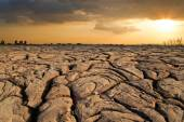 Dry earth texture at thailand — Stock fotografie