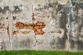 Moldy brick wall background — Stock Photo
