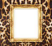 Blank golden frame with leopard texture  — Zdjęcie stockowe