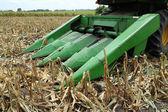 Farmer combines a field of corn — Stock Photo