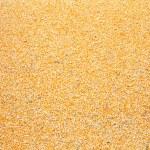 Raw kernel corn beans — Stock Photo #56717603