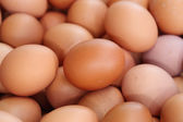Fresh eggs for sale at a market — Stock Photo