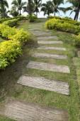 Pathway — Stock Photo