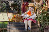 Country Girl Rag Doll — Stockfoto