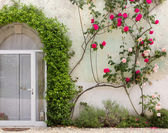 Facade of Historic Building Covered By Ivy and Roses — Stock Photo