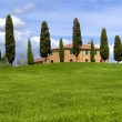 Постер, плакат: House on the hill with cypress trees Tuscany