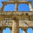 Detail Greek temple of Neptune - Paestum Italy — Stock Photo #57846859