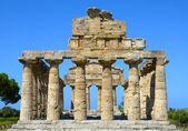 Greek temple of Cecere- Paestum Italy — Stock Photo