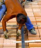 Werknemer in werkkleding versterking metalen kader maken — Stockfoto
