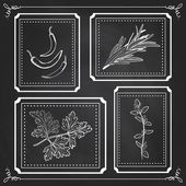 Handdrawn Illustration - Health and Nature Set. Collection of He — Stock Vector