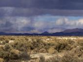 Mojave Desert — Stock Photo