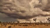 Storm Over Desert — Stock Photo