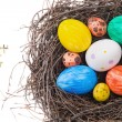 Colorful Easter eggs in a nest on a white background. Top view — Stock Photo #66221151