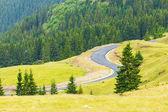 Transalpina, montagnes de parang, Roumanie — Photo