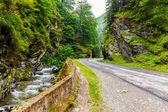 Montanhas parang, roménia — Fotografia Stock