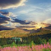 Tatra Mountains, vintage look  — ストック写真