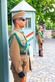 BUDAPEST, HUNGARY - JULY 24, 2014 : Ceremonial guard at the Presidential Palace. They guard the entrance of the Presidents office in the Sandor Palace, Budapest — Stock Photo