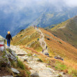 Zakopane, POLAND - September 13: Group of tourists walk to the top of the Kasprowy Wierch in Tatra Mountains on September 13, 2014 in Tatra Mountains, Poland. — Stock Photo #57731445