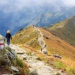 Zakopane, POLAND - September 13: Group of tourists walk to the top of the Kasprowy Wierch in Tatra Mountains on September 13, 2014 in Tatra Mountains, Poland. — Stock Photo #57731445