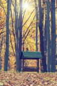 Animals feeder in autumn forest, vintage look — Stock Photo
