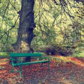Bench in the autumn park, vintage look  — Stock Photo