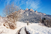 Winter Landscape In Pieniny Mountains, Three Crowns, Poland — Foto Stock