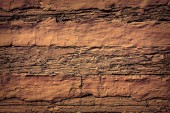 Wood wall background — Stock Photo