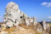 Jurassic limestone rocks - Polish Jura, Poland — Stock Photo
