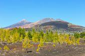 Pico Viejo and El Teide, El Teide National Park, Tenerife, Canary Islands, Spain — Stock Photo