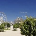 Famous Tuileries garden (Jardin des Tuileries). Beautiful and popular public garden located between the Louvre Museum and the Place de la Concorde. Paris — Stock Photo #52304279