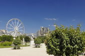 Famous Tuileries garden (Jardin des Tuileries). Beautiful and popular public garden located between the Louvre Museum and the Place de la Concorde. Paris — Stock Photo