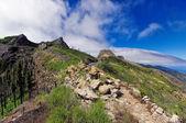 La Gomera - Roque El Cano, La Gomera, Canary island, Spain — Stock Photo