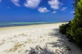 The sunny tropical beach on Maldives island — Stock Photo